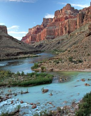 Little Colorado River Near Confluence